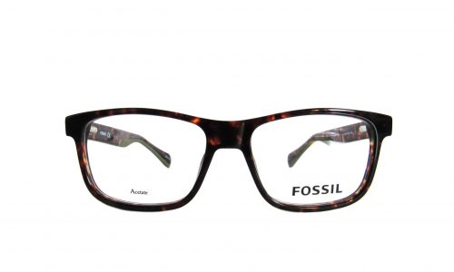 Fossil - Tortoise rectangle with green ear